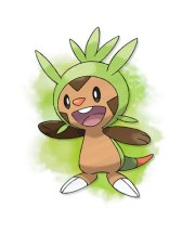 Chespin-Pokemon-X-and-Y